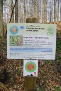 Beschreibung zu Ort 17 des NaturKraftWeges / Mörlenbach